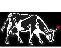 animal_cow