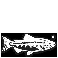 animal_fish
